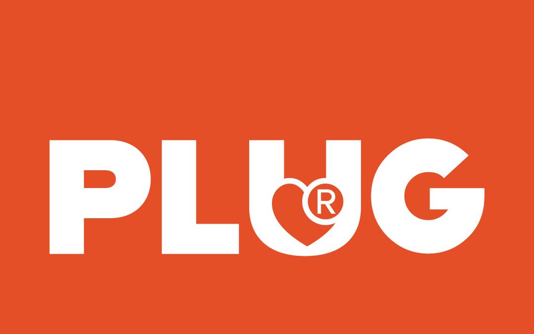 9-PayU_PLUG.png